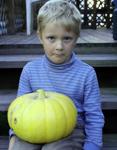 Giant_pumpkin_3