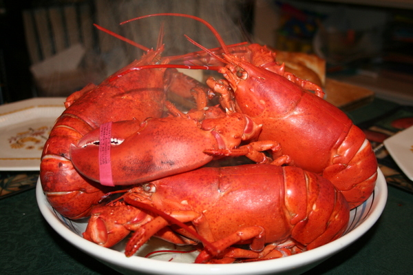 ... all, and as far as preparation goes, a boiled lobster is pretty easy